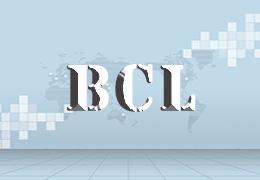 Bank Confirmation Letter (BCL)